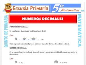 Modelo de la Ficha de Numero Decimal para Quinto de Primaria
