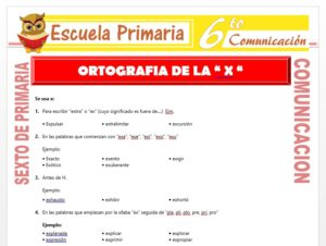 Modelo de la Ficha de Ortografia de la X para Sexto de Primaria