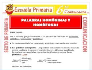 Modelo de la Ficha de Palabras Homónimas y Homófonas para Sexto de Primaria