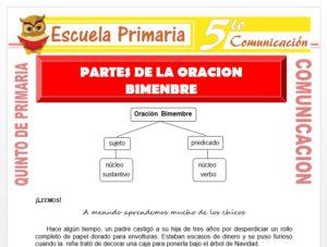 Modelo de la Ficha de Partes de la Oración Bimembre para Quinto de Primaria