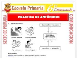 Modelo de la Ficha de Practica de Antónimos para Sexto de Primaria