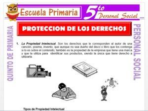 Modelo de la Ficha de Protección de los Derechos para Quinto de Primaria