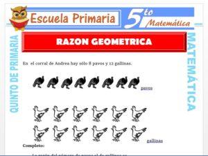 Modelo de la Ficha de Razón Geométrica para Quinto de Primaria