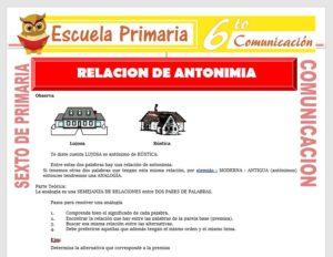 Modelo de la Ficha de Relación de Antonimia para Sexto de Primaria