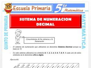 Modelo de la Ficha de Sistema de Numeración Decimal para Quinto de Primaria