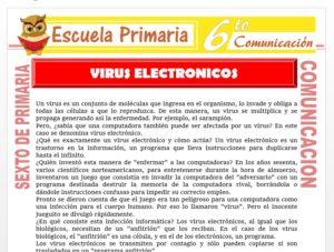 Modelo de la Ficha de Virus Electronico para Sexto de Primaria
