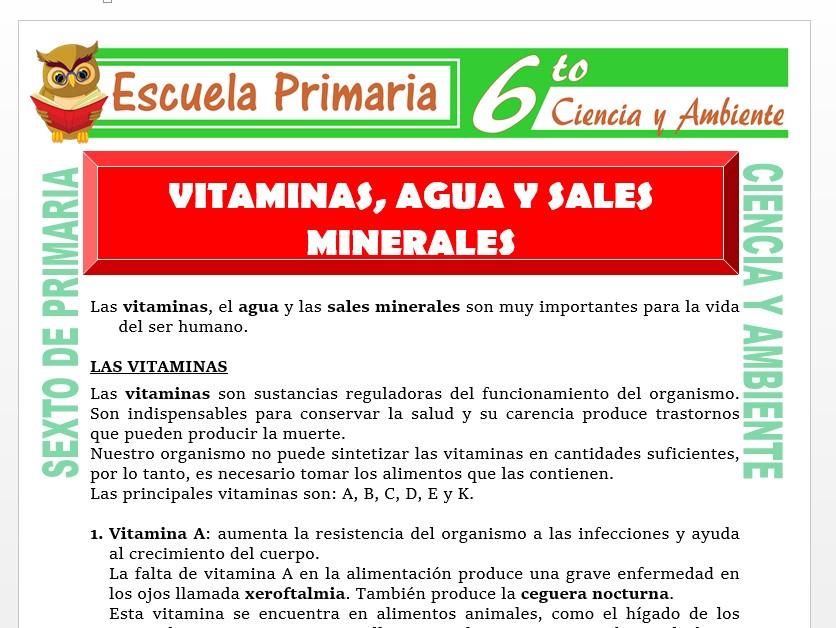 Modelo de la Ficha de Vitaminas, Agua y Sales Minerales para Sexto de Primaria