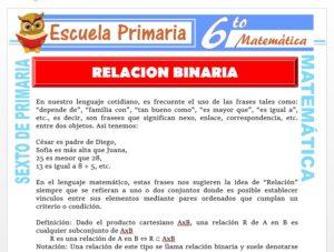 Modelo de la Ficha de Definición de la Relación Binaria para Sexto de Primaria
