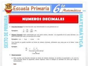 Modelo de la Ficha de Ejercicios de Números Decimales para Sexto de Primaria