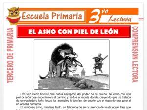 Modelo de la Ficha de El Asno Con Piel De León para Tercero de Primaria