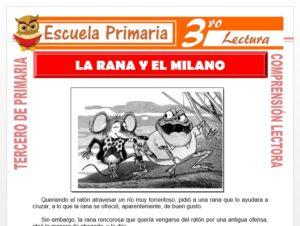 Modelo de la Ficha de El Ratón, la Rana y el Milano para Tercero de Primaria