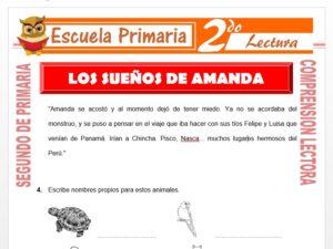 Modelo de la Ficha de Los Sueños De Amanda para Segundo de Primaria