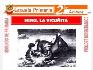 Modelo de la Ficha de Miski La Vicuñita para Segundo de Primaria