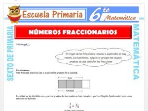 Modelo de la Ficha de Números Fraccionarios para Sexto de Primaria