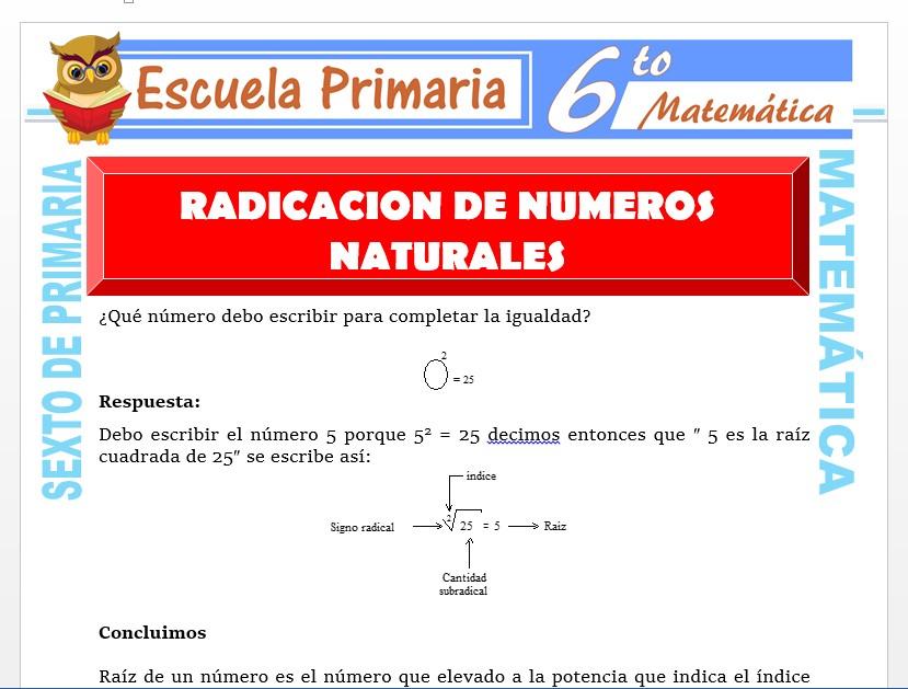 Modelo de la Ficha de Radicación de Números Naturales para Sexto de Primaria