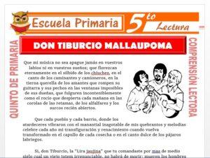 Modelo de la Ficha de Don Tiburcio Mallaupoma para Quinto de Primaria