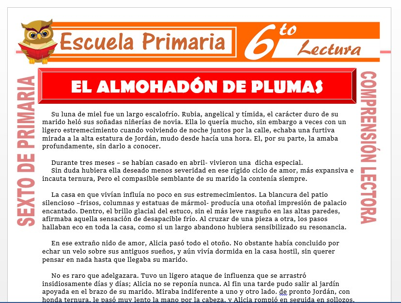 Modelo de la Ficha de El Almohadón de Plumas para Sexto de Primaria