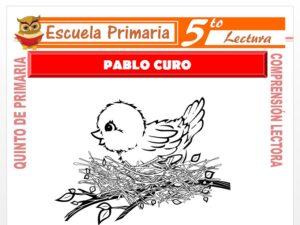 Modelo de la Ficha de Pablo Curo para Quinto de Primaria