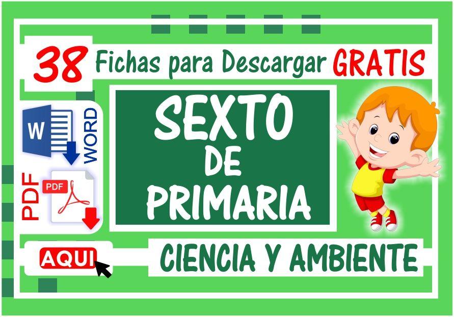 Ciencia y Ambiente para Sexto de primaria