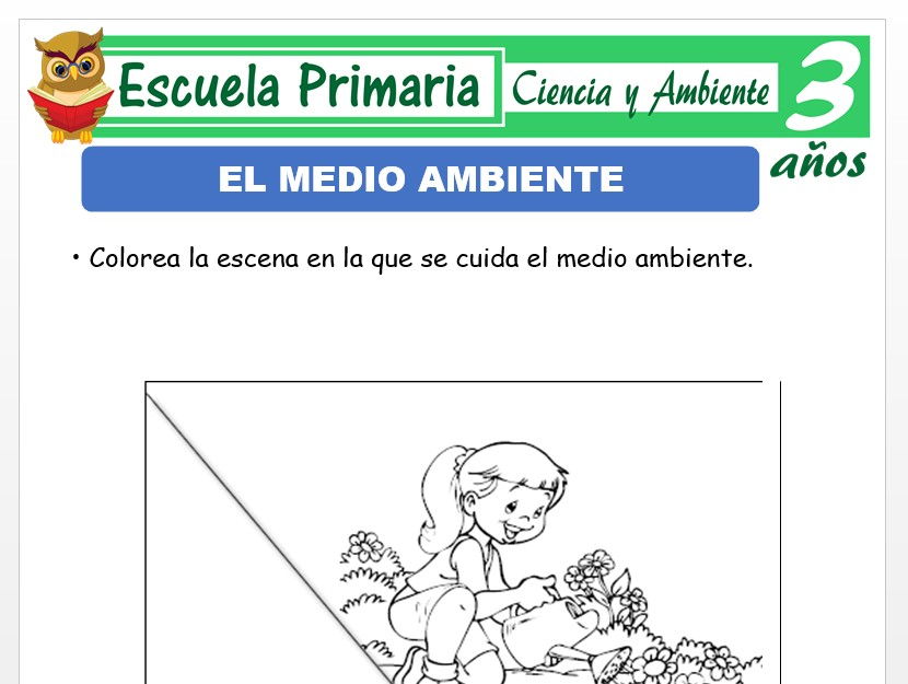Modelo de la Ficha de Medio ambiente para Niños de 3 Años