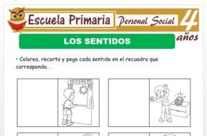 Modelo de la Ficha de Actividad de los sentidos para Niños de 4 Años