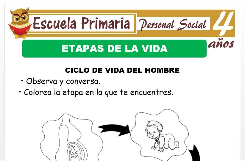 Modelo de la Ficha de Actividades de etapas de la vida para Niños de 4 Años