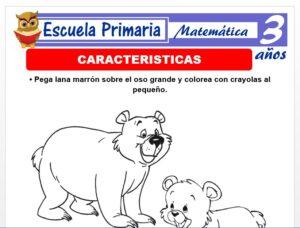 Modelo de la Ficha de Características para Niños de 3 Años