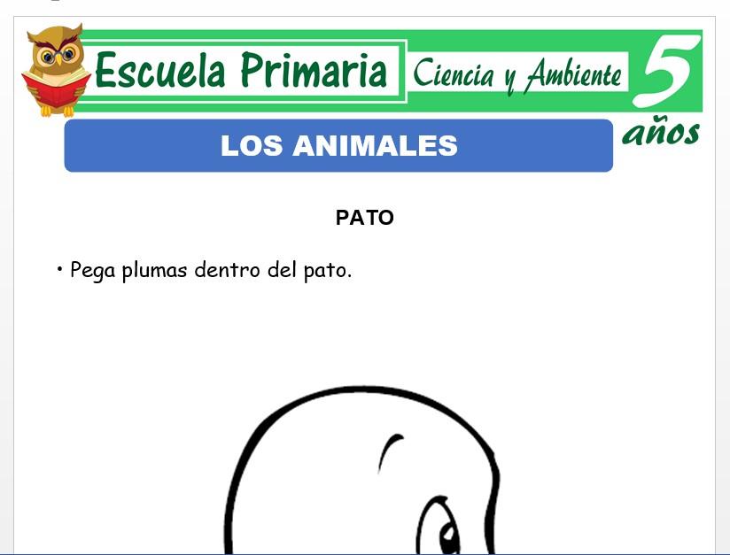 Modelo de la Ficha de Clasificaciòn de los animales para Niños de 5 Años