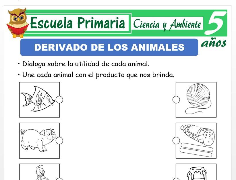 Modelo de la Ficha de Derivado de los animales para Niños de 5 Años