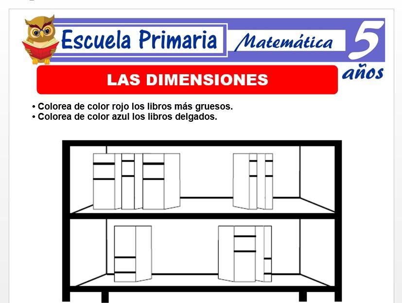 Modelo de la Ficha de Las dimensiones para Niños de 5 Años