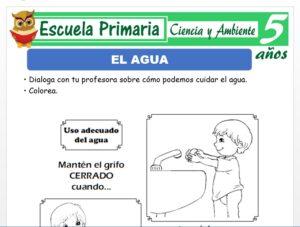 Modelo de la Ficha de El agua para Niños de 5 Años