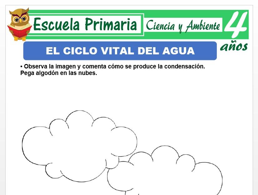 Modelo de la Ficha de Estados del agua para Niños de 4 Años