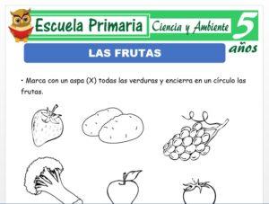 Modelo de la Ficha de Frutas para Niños de 5 Años