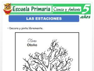 Modelo de la Ficha de Las estaciones para Niños de 5 Años