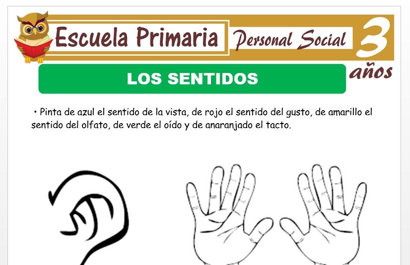 Modelo de la Ficha de Los sentidos para Niños de 3