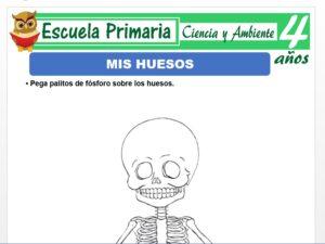 Modelo de la Ficha de Mis huesos para Niños de 4 Años