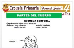 Modelo de la Ficha de Partes del cuerpo para Niños de 4 Años