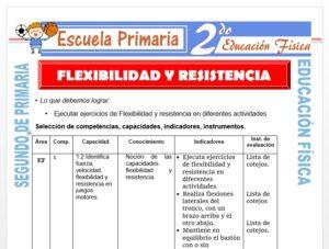 Modelo de la Ficha de Ejercicios de Flexibilidad y Resistencia para Segundo de Primaria