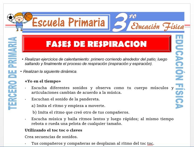 Modelo de la Ficha de Fases de Respiración para Tercero de Primaria