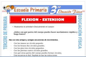 Modelo de la Ficha de Flexión - Extensión para Tercero de Primaria