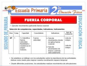 Modelo de la Ficha de Fuerza Corporal para Segundo de Primaria