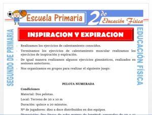 Modelo de la Ficha de Inspiración y Expiración para Segundo de Primaria