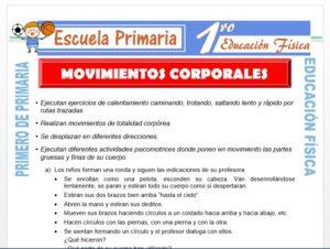 Modelo de la Ficha de Movimientos Corporales para Primero de Primaria