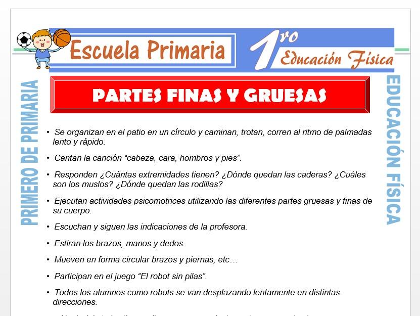 Modelo de la Ficha de Partes Finas y Gruesas del Cuerpo para Primero de Primaria
