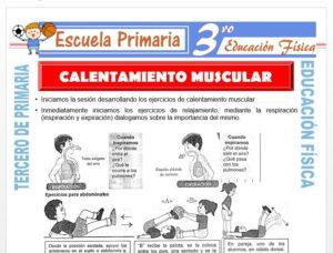 Modelo de la Ficha de Calentamiento Muscular para Tercero de Primaria