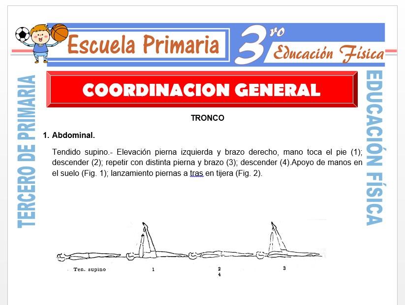 Modelo de la Ficha de Coordinación General para Tercero de Primaria