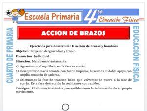 Modelo de la Ficha de Acción de Brazos para Cuarto de Primaria
