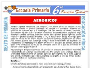 Modelo de la Ficha de Aeróbicos para Sexto de Primaria