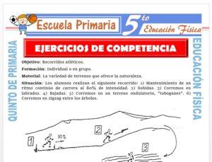 Modelo de la Ficha de Ejercicios de Competencia para Quinto de Primaria