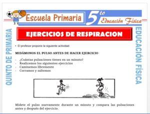 Modelo de la Ficha de Ejercicios de Respiración para Quinto de Primaria